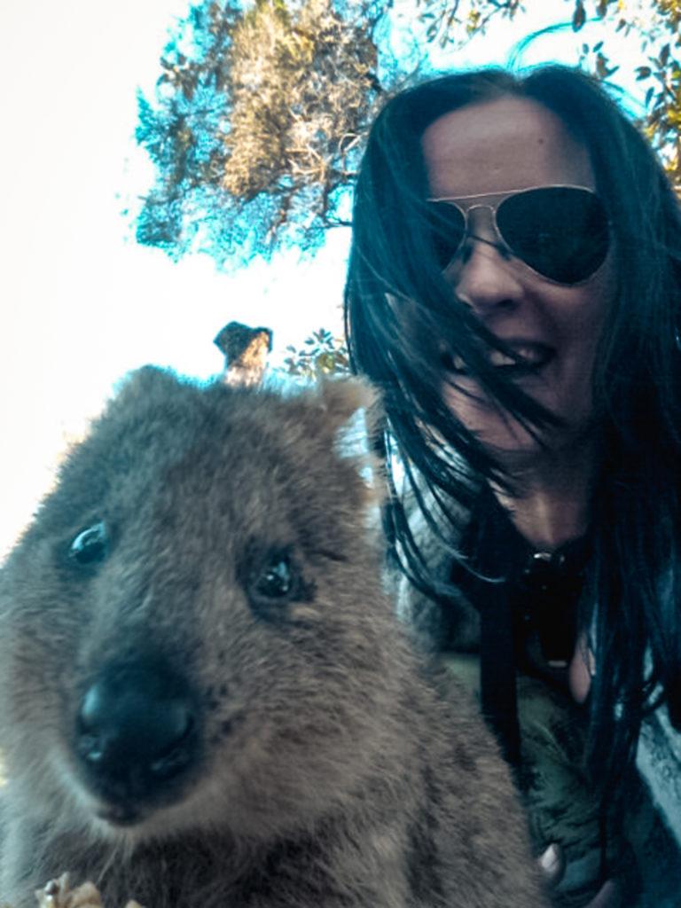 Quokka Selfie Rottnest Island